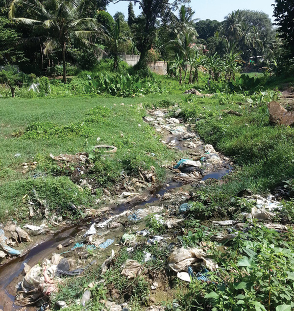 A contaminated waterway in Sri Lanka