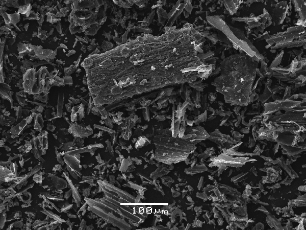 A electron microscopic image of biochar made from macadamia nut shells