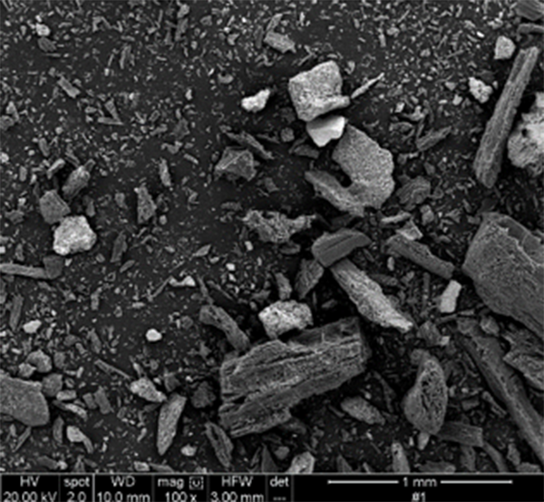 A electron microscopic image of biochar made from wood shavings